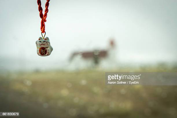 Close-Up Of Animal Necklace Over Field
