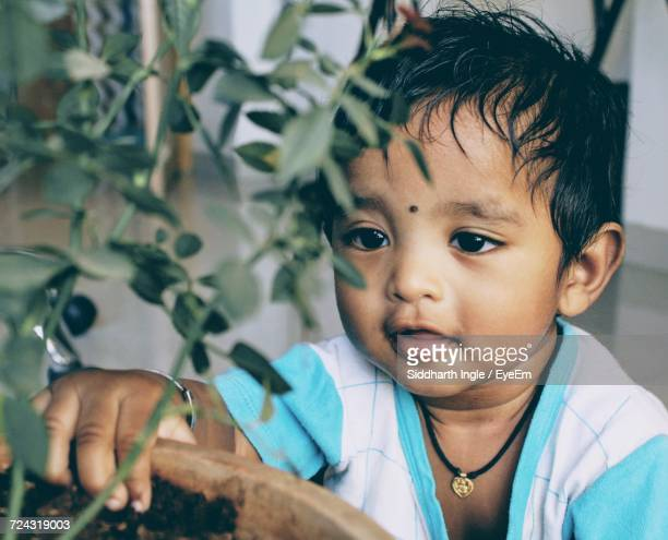 Close-Up Of Baby Boy Looking At Potted Plant