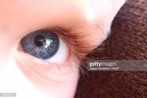 Close-up of baby eye