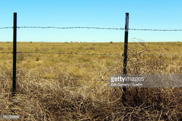 Close-Up Of Barbed Wire On Field Against Clear Sky