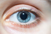 A close-up shot of a beautiful blue woman eye looking at the camera with dilated pupil.