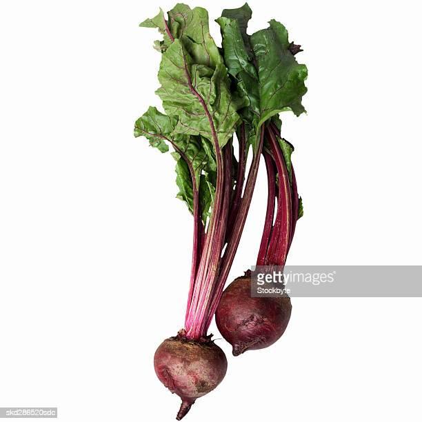 Close-up of beet