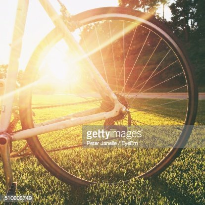 Close-up of bicycle tire in park