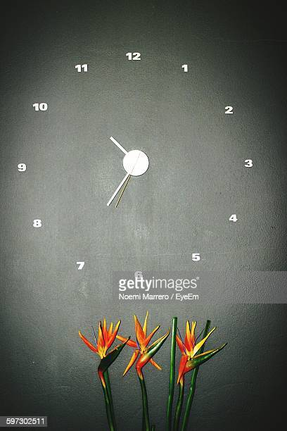 Close-Up Of Bird Of Paradise Flowers Against Clock Over Gray Background