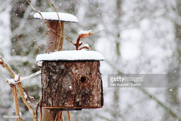 Close-Up Of Birdhouse During Winter