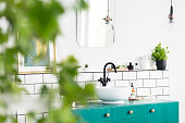 Close-up of blurred leaves with a sink, green cupboard and mirror in the background in the bathroom interior. Real photo