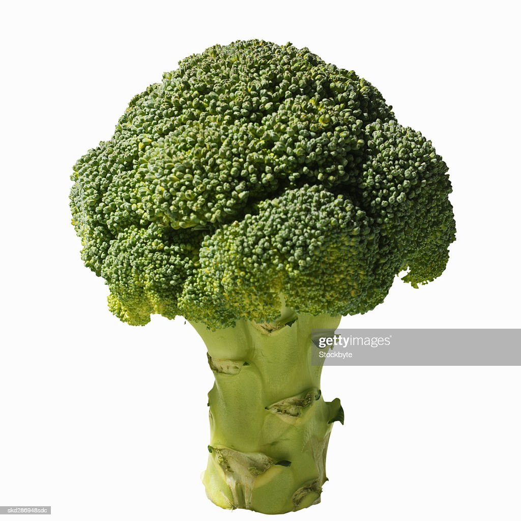 Close-up of broccoli : Stock Photo