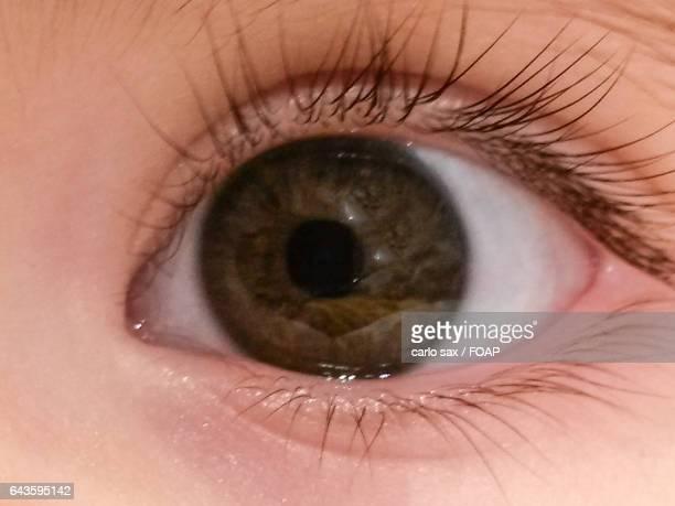 Close-up of brown baby girls' eyes