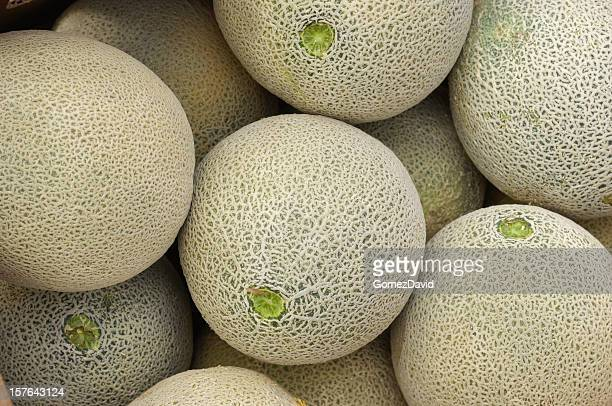 Close-up of Cantaloupes Ready for Shipping