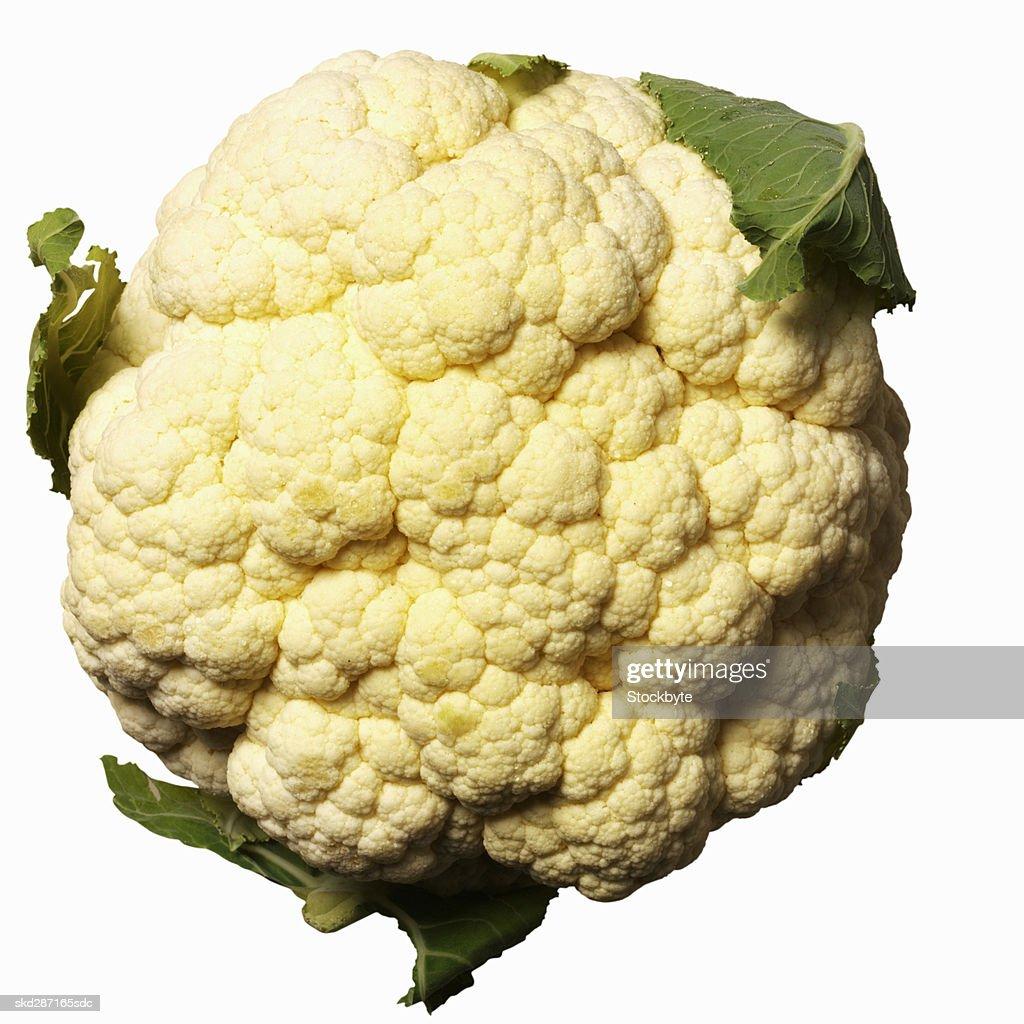 Close-up of cauliflower : Stock Photo