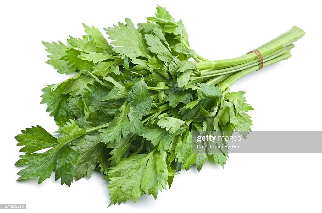 Close-Up Of Celery Against White Background