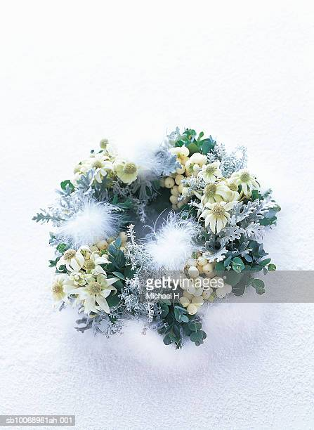 Close-up of christmas wreath of flannel flower, Snow Tree, dusty miller and eucalyptus
