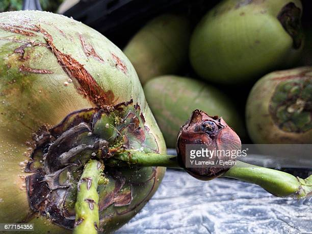 Close-Up Of Coconuts
