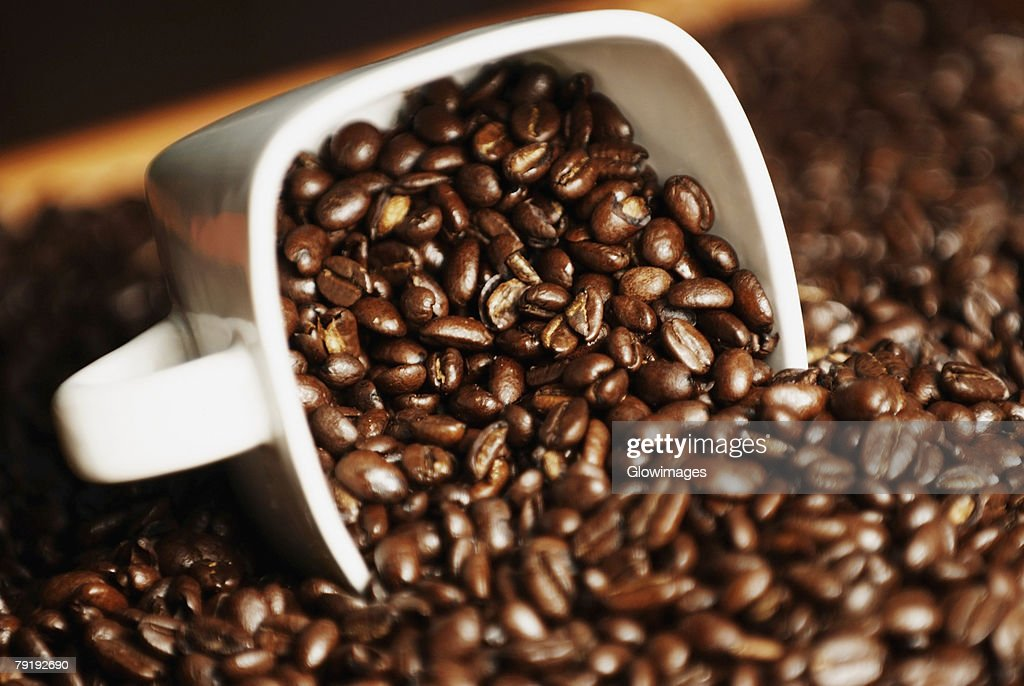 Close-up of coffee beans in a cup : Stock Photo