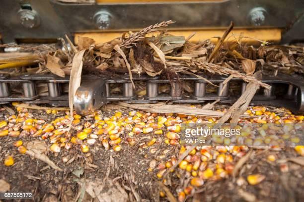 Closeup of corn harvester in Dalmatia Pennsylvania USA