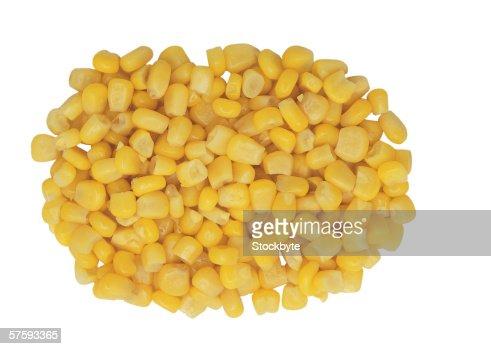 close-up of corn kernels