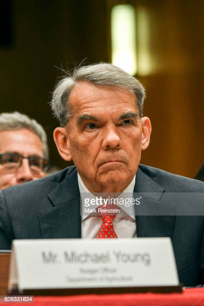 Closeup of director of the US Department of Agriculture's Office of Budget and Policy Analysis Michael L Young as he testifies before a Senate...