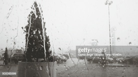 Close-up of droplets on windscreen