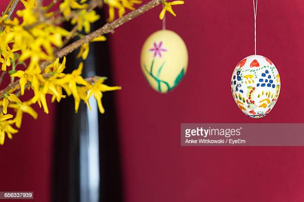 Close-Up Of Easter Eggs Hanging From Plant Stem