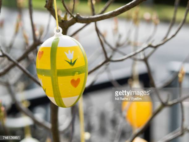 Close-Up Of Easter Eggs Hanging On Bare Tree