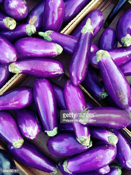 Close-up of eggplants on display for sale