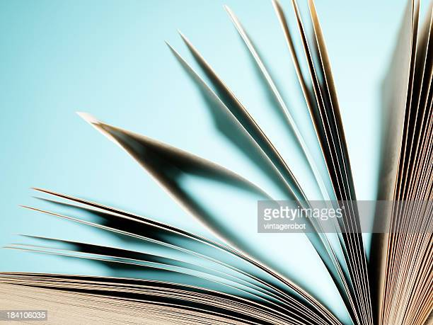 Close-up of fanning book pages on light blue background