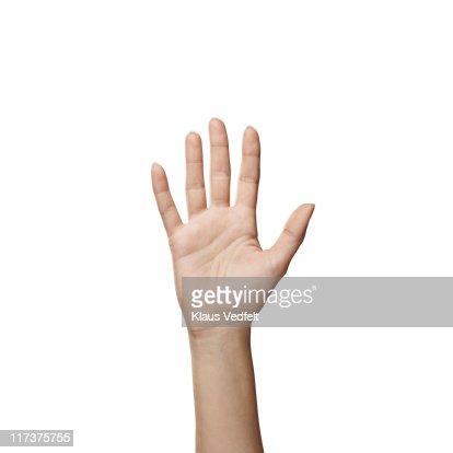 Closeup of female hand, palm facing camera : Stock Photo