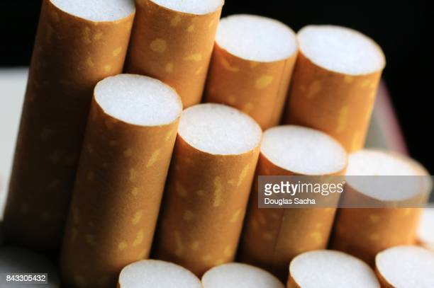 Close-up of filters on Cigarettes