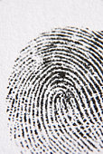 Close-Up Of Finger Print
