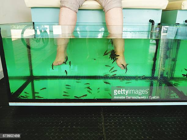Fish pedicure stock photos and pictures getty images for Fish eating dead skin pedicure