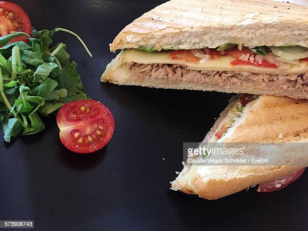 Close-Up Of Fresh Chicken Meat Toasted Sandwich