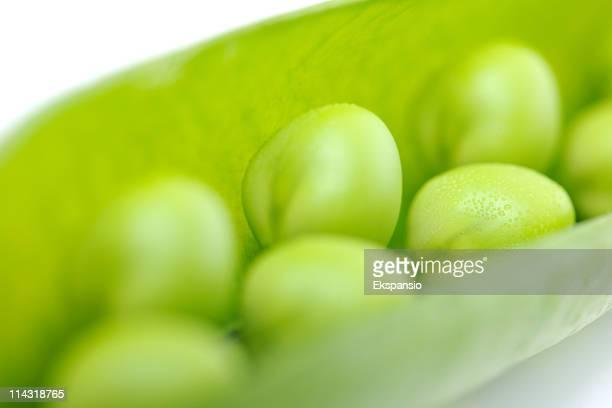 Gros plan d'herbe fraîche Peas in a Pod series