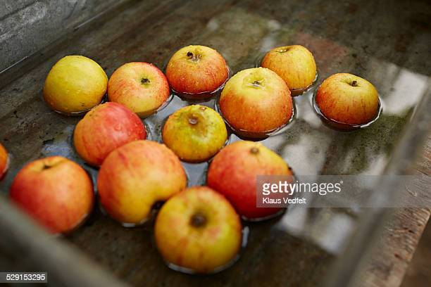 Close-up of  fresh washed apples