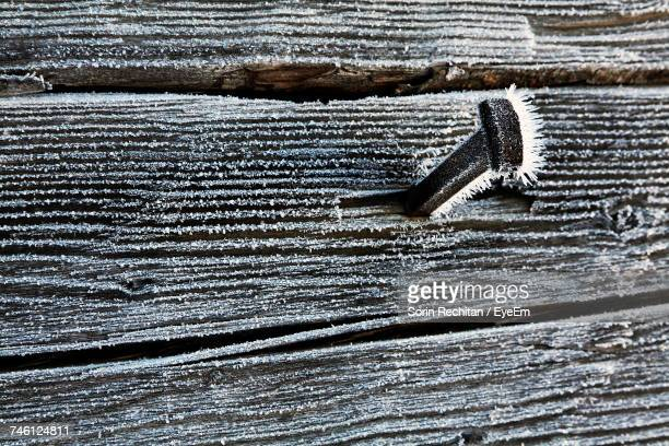 Close-Up Of Frosted Nail On Wood