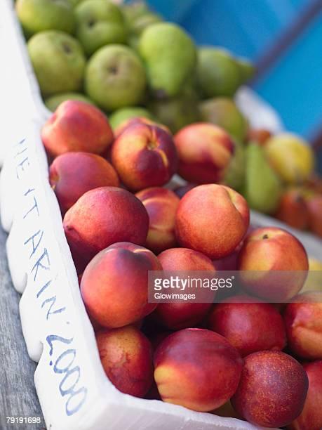 Close-up of fruits in fruit cartons, Providencia, Providencia y Santa Catalina, San Andres y Providencia Department, Colombia