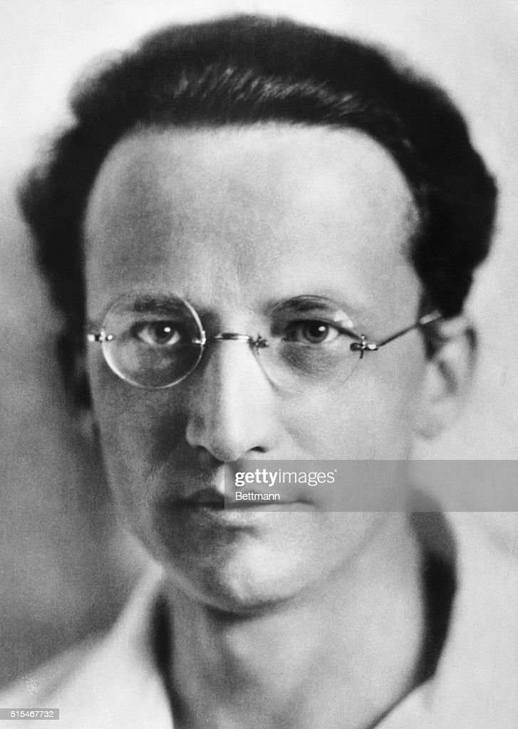 erwin schrodinger The life and times of erwin schrodinger is discussed including his education, contribution to quantum physics plus personal history in austria, germany and ireland.