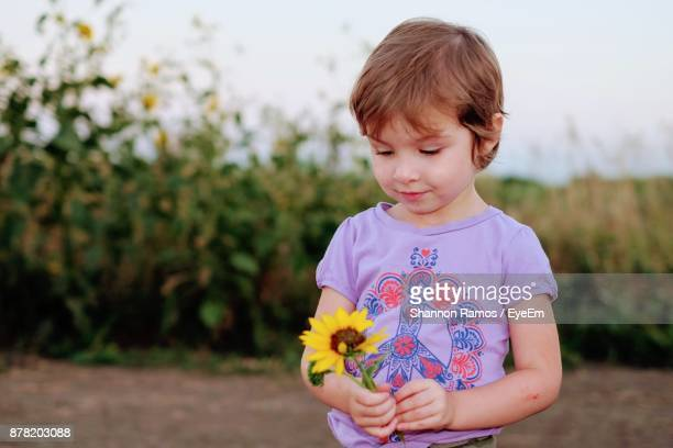 Close-Up Of Girl Holding Flower While Standing On Field