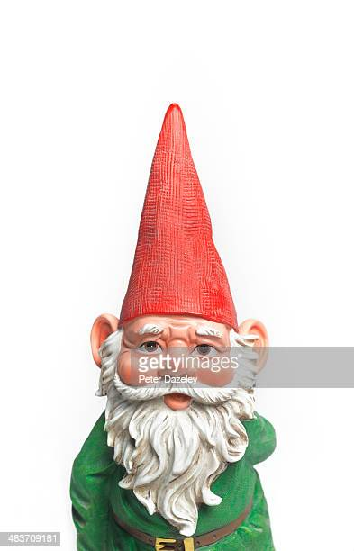 Close-up of gnome
