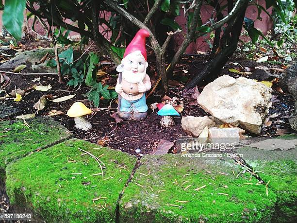 Close-Up Of Gnome Statue By Plant In Back Yard