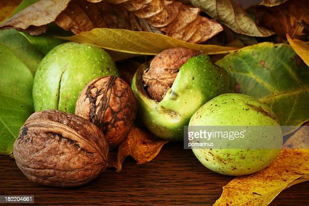 Close-up of green and brown walnuts on wooden table