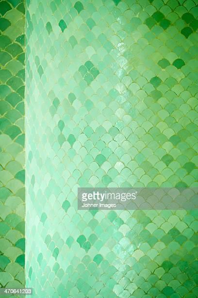 Close-up of green mosaic