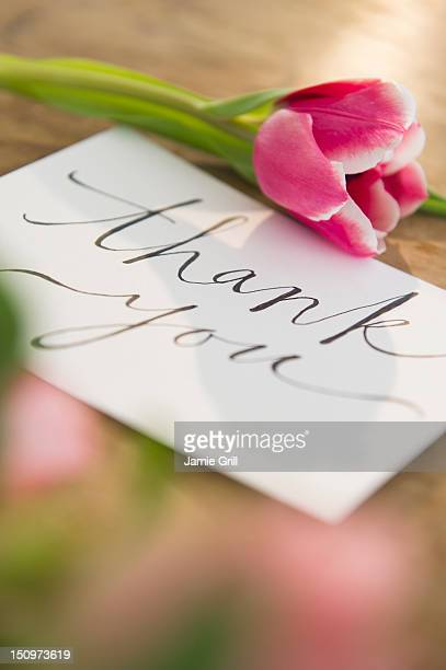 Close-up of greeting card and flower