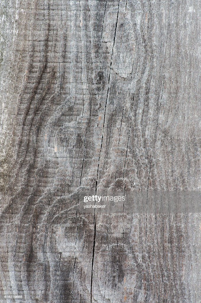 Close-up of grey wood  old planks texture background : Stock-Foto