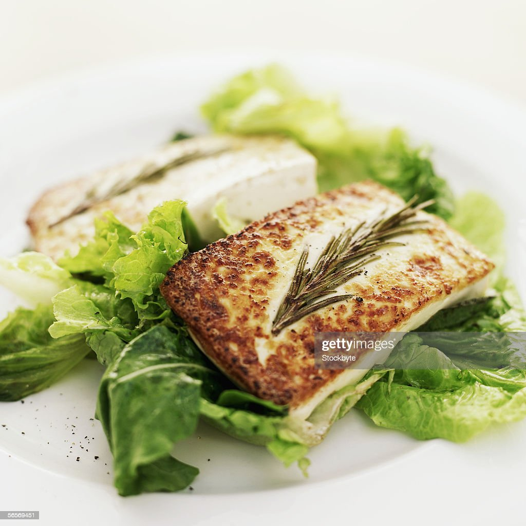 close-up of grilled cheese served on lettuce greens : Stock Photo