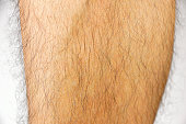 close up the hairy leg of a man