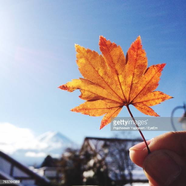 Close-Up Of Hand Holding Maple Leaf Against Sky