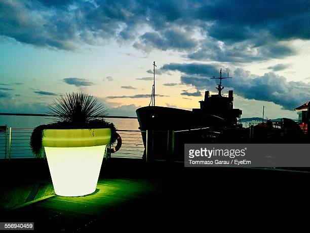 Close-Up Of Illuminated Potted Plant Against Boat Moored In Sea