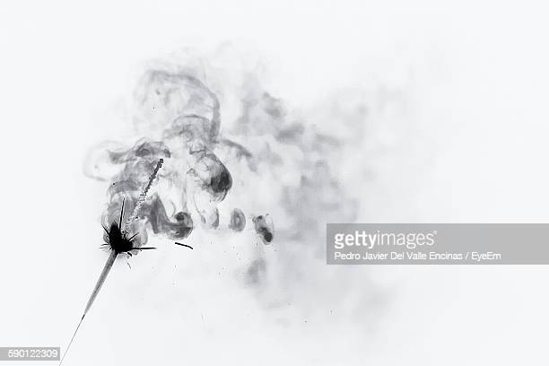 Close-Up Of Incense Against White Background