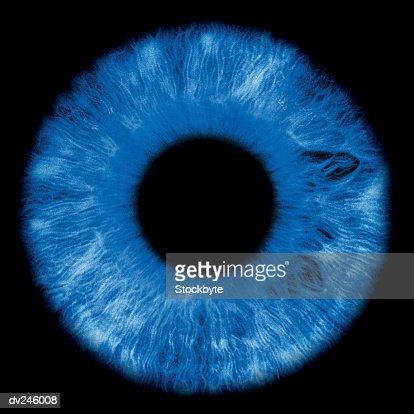 Close-up of iris and pupil