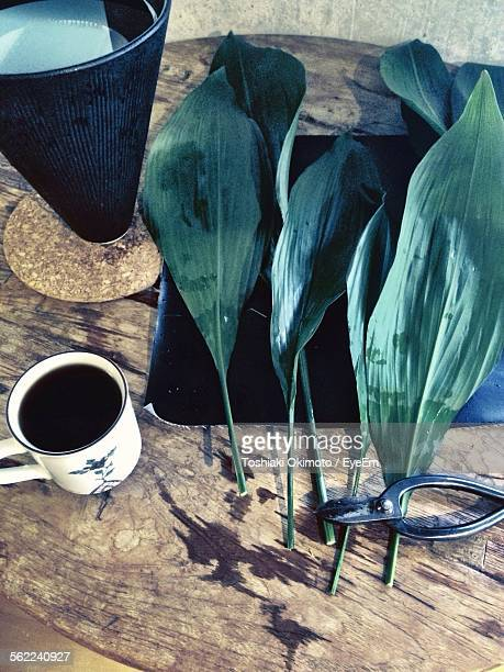 Close-Up Of Leaves On Table With Vase And Black Coffee